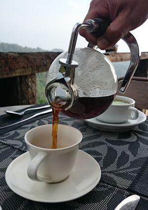 Kopi Luwak – a világ legdrágább kávéja
